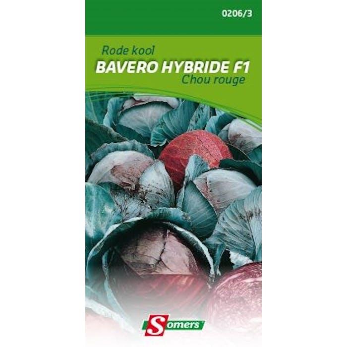 Rode  kool Bavero hybride f1