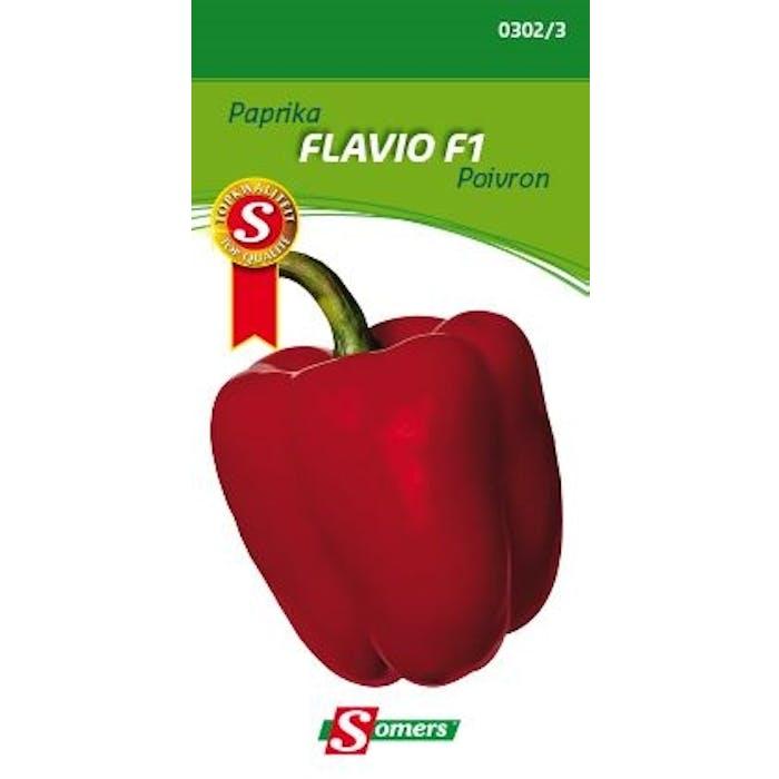 Paprika Flavio f1
