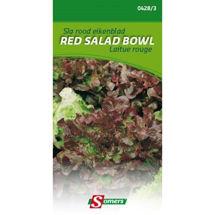 Sla rood eikenblad Red Salad Bowl