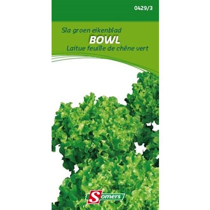 Sla groen eikenblad Bowl