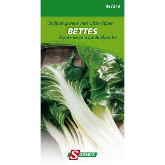 Snijbiet groene met witte ribben