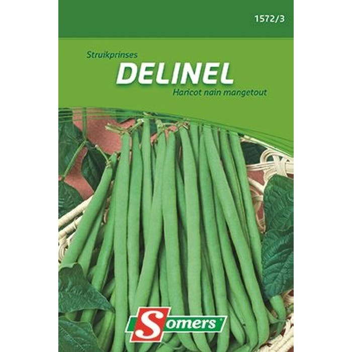 Struikprinces Delinel