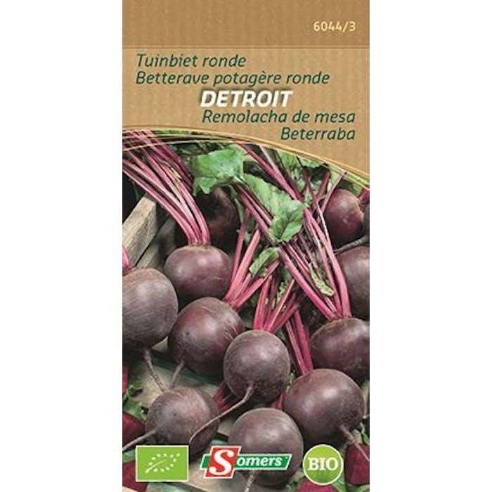 Tuinbiet Ronde Detroit
