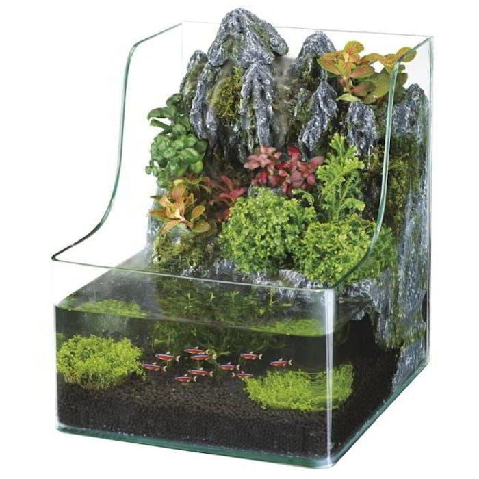 Aquarium Planty 25