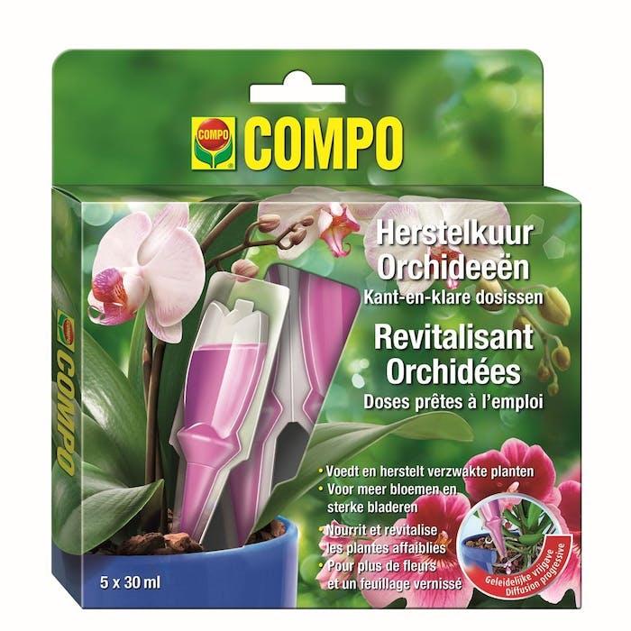 Herstelkuur Orchideeën