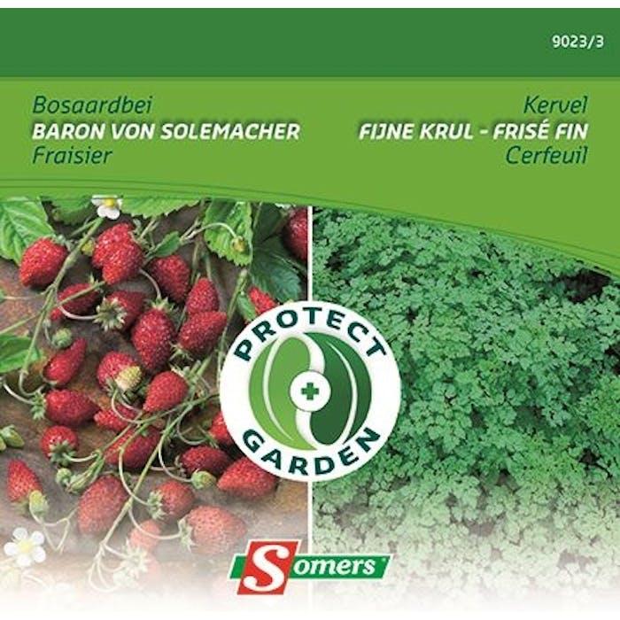 Aardbei -Kervel - Protect Garden