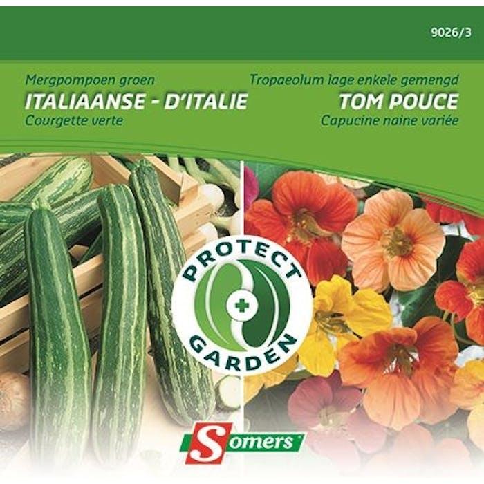 Courgette - Tropaeolum Protect Garden