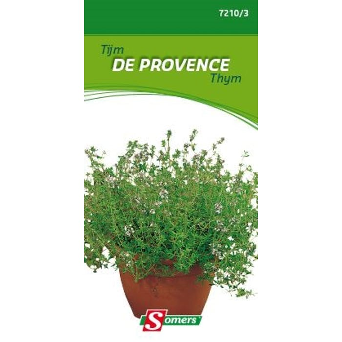 Thymus de provence