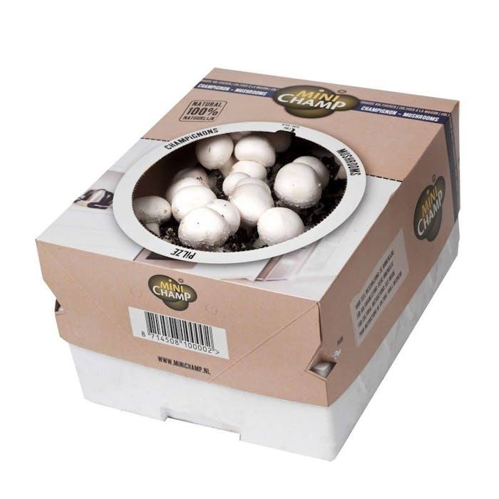 Witte Champignons Doos 7,5 L