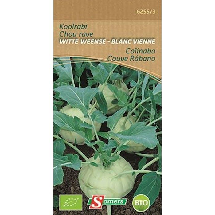 Koolrabi Witte Weense Bio