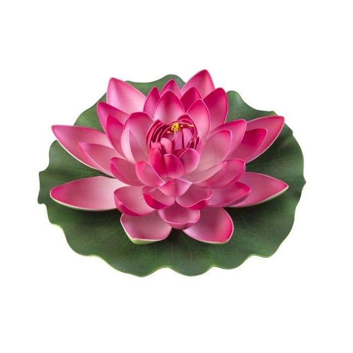 Lotus foam fuchsia 28 cm